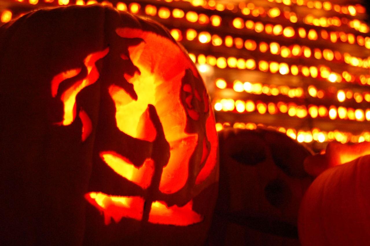 Przebrania gwiazd na Halloween